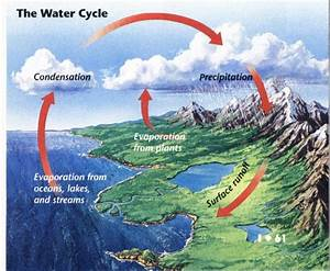 Water Cycle  My Journey Through The Water Cycle