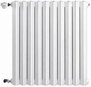 Prix Radiateur Fonte : radiateur en fonte horizontal savane rafael 2 type s2 ~ Melissatoandfro.com Idées de Décoration