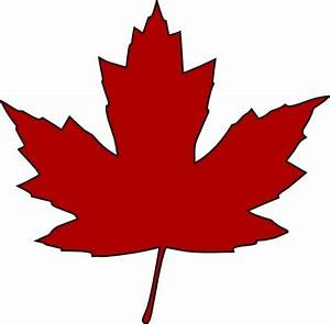 Images Of Maple Leaves - ClipArt Best