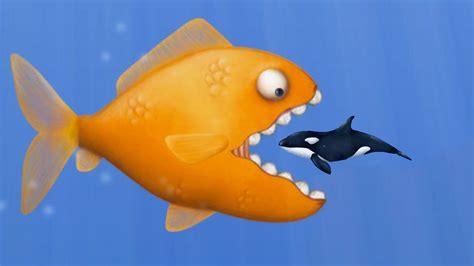 eat fish  grow bigger tasty blue doovi