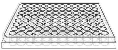 96 Well Plate Template 96 Well Plate Template Cyberuse
