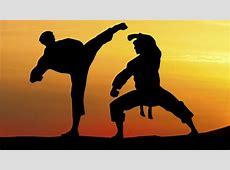 Art martial, sport de combat L'Express