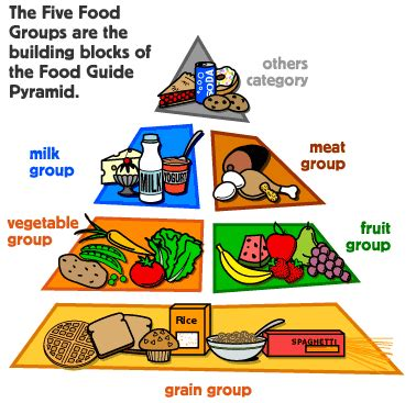 lesson plan for teaching the food pyramid fifthpage