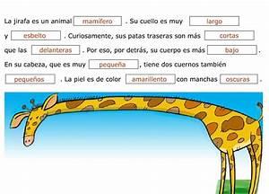La descripción de animales: 2do grado Material de Aprendizaje