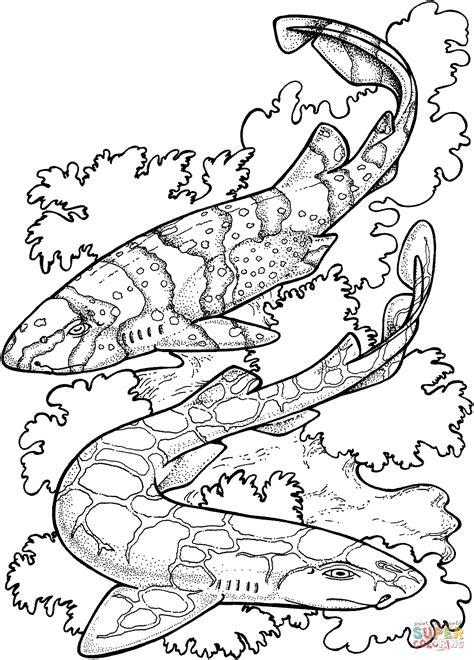 Coloriage Requin Zbre Coloriages Imprimer Gratuits