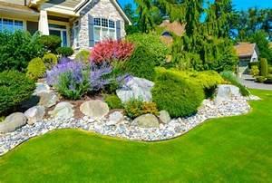Gartengestaltung Pflegeleichte Gärten : vorgarten anlegen ideen gartengestaltung pflegeleichte immergruene pflanzen garten pinterest ~ Sanjose-hotels-ca.com Haus und Dekorationen