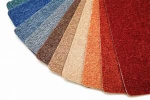 Haare Vom Teppich Entfernen : hundehaare entfernen so bekommen sie haare aus dem teppich raus ~ Bigdaddyawards.com Haus und Dekorationen