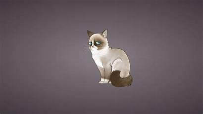 Cat Cartoon Grumpy Wallpapers Desktop Funny Meme