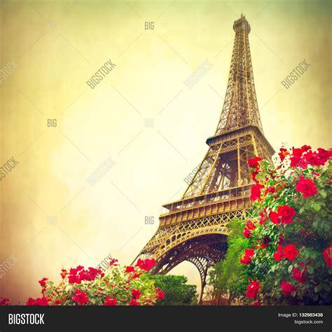 paris eiffel tower sunrise paris image photo bigstock