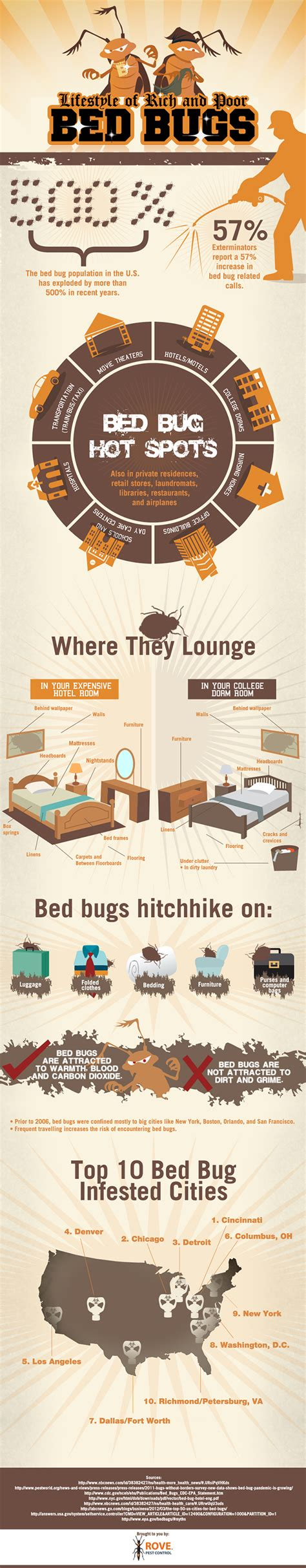 lifestyle of rich and poor bed bugs rove pest