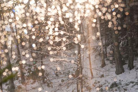 Beautiful, Fairy Lights, Winter  Image #275869 On Favimcom