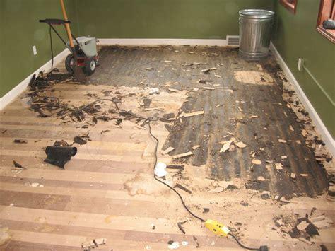 Chris & Lisa   Custom Hardwood Floors by Jeffries