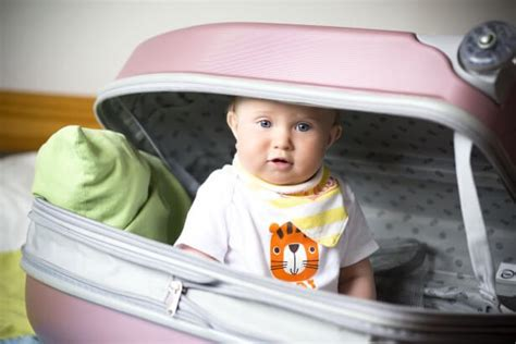 6 Best Baby Foods For Travelling