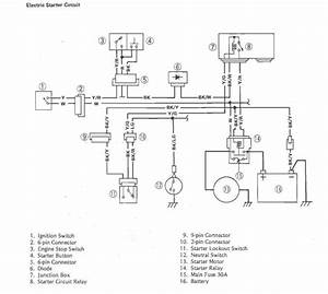Kawasaki Brute Force 750 Wiring Diagram  Kawasaki  Wiring Diagram Images