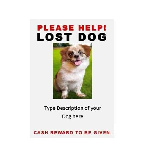 40 Lost Pet Flyers [missing Cat  Dog Poster]  Template. Download Expense Report Template. Baseball Stat Sheet Template. Simple Performance Appraisal Form Template. Resume Templates For Openoffice Free Template. Irs Approved Mileage Logs Template. Personal Medical Journal Template. Nursing Situational Interview Questions And Template. Word Resume Template 2010 Template