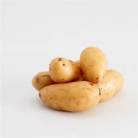 pomme de terre ratte quellepommedeterre com