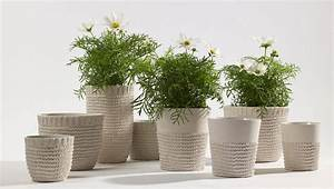 Flower, Pots, Can, Transform, Any, Garden, Or, Interior