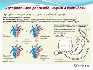 Презентации на тему артериальная гипертония