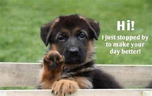 Cheer up   animals   Pinterest