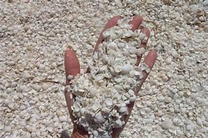 Besteht Sand Aus Muscheln : australien reisebericht auf nach perth ~ Kayakingforconservation.com Haus und Dekorationen