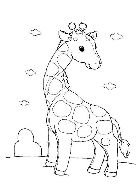 tiere für kinderzimmer malvorlage giraffe kinderzimmer 1042 malvorlage giraffe