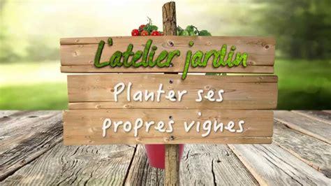 comment planter ses propres vignes