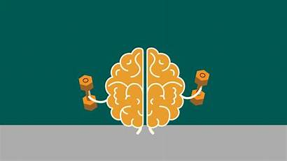 Brain Exercise Research Aging Process Rehabilitation Affect