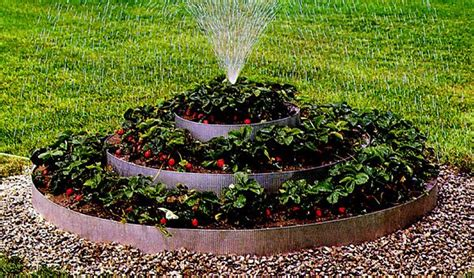Pictures Of Raised Strawberry Beds