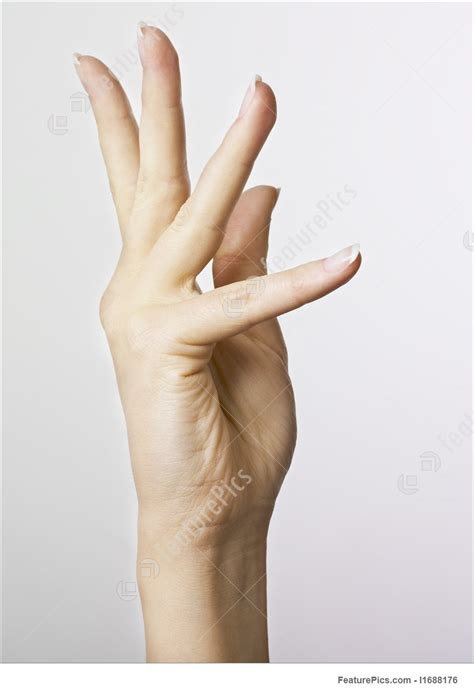 human body parts womans hand stock photo