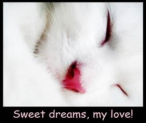 Sweet Dreams My Love Quotes. QuotesGram