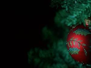 Red Ornament Hanging On A Christmas Tree Wtih Black ...