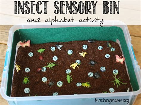 insects activities for preschoolers insect sensory bin and alphabet activity 860