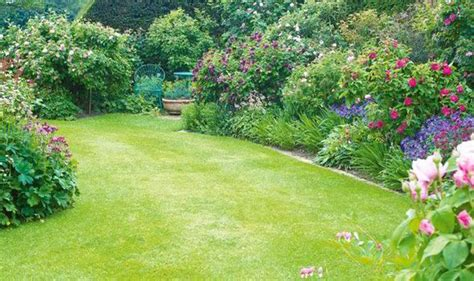 outdoor garden photos earn your stripes create a beautiful lawn garden life style express co uk