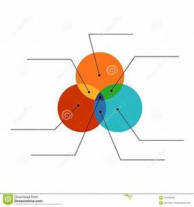 Venn Diagram Flat Style Color Infographics Template With Lines  Stock Vector