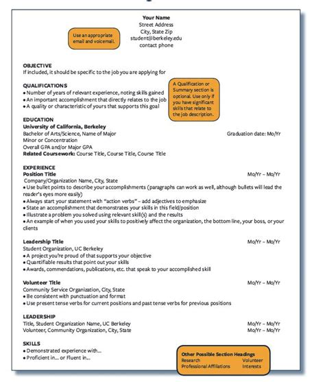 Chronological Resume Outline by Best 20 Resume Outline Ideas On