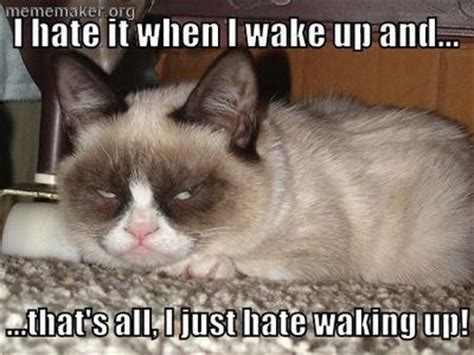 GC i hate it when i wake up - sz. * | Grumpy Cat | Pinterest