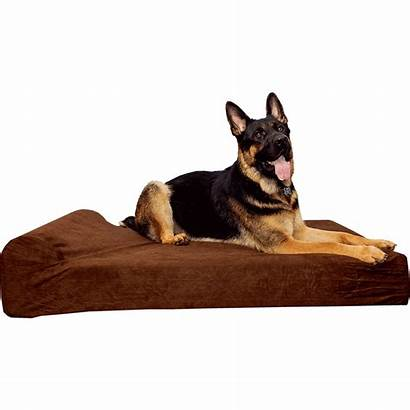 Dog Beds Extra Waterproof Pets Simien Bed