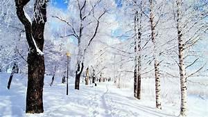 Winter Background #6928948