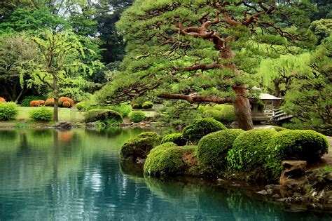 Japanischer Garten Zaun by Calm Zen Lake And Bonzai Trees In Tokyo Garden
