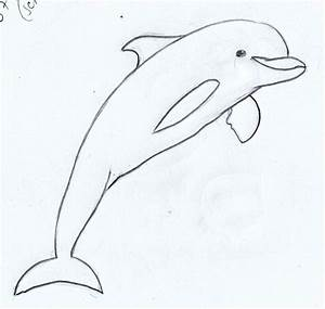 How To Draw Dolphins Weekly Doodles And Tuts How To Draw A ...