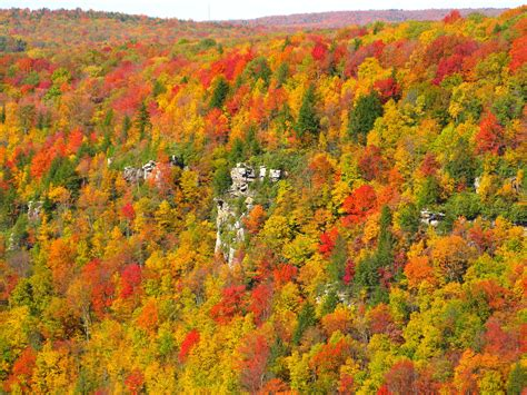 fall colors in virginia poonam parihar you re the adventure go seek yourself
