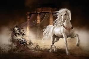 Caligula's Horse Digital Art by Shanina Conway