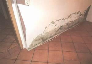 Feuchtigkeit In Wänden Messen : nasse keller nasse w nde schimmel wir wirtschaft ~ Lizthompson.info Haus und Dekorationen