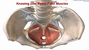 Video  Keep The Kegels  Restore Your Core And Pelvic Floor