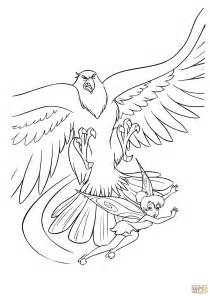 hawk  fairy coloring page  printable coloring pages
