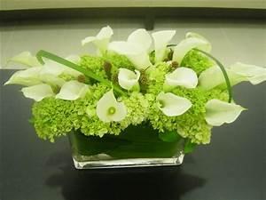 Low light indoor plants and trees | flowersetc