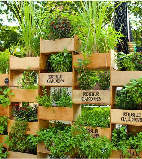 Vertical Herb Garden Ideas by Vertical Herb Garden Ideas Plantinfo Everything And