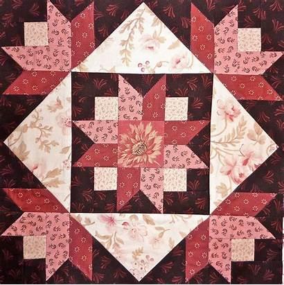 Quilt Saturday Sampler Block Blocks Patterns Quilts