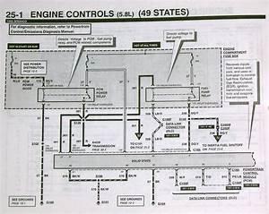 1995 Blowing Fuel Pump Fuses