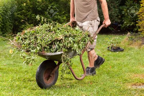 Gardeners In Birmingham by Garden Waste Charges Set For Angus Caused Quot Chaos Quot In